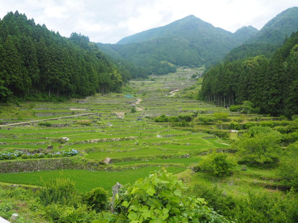 f:id:maido-doumo-naoyadesu:20160618230635j:plain
