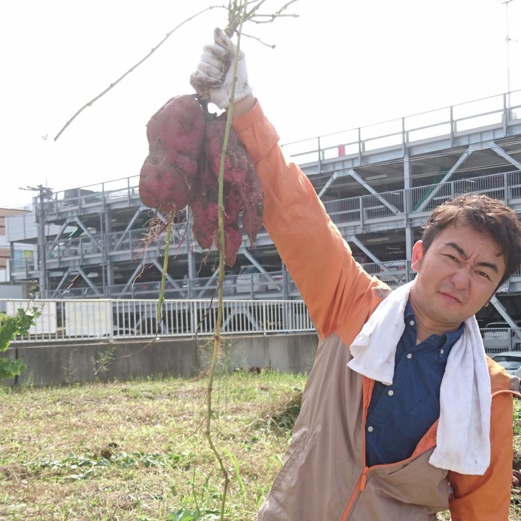 f:id:maido-doumo-naoyadesu:20161011134308j:plain