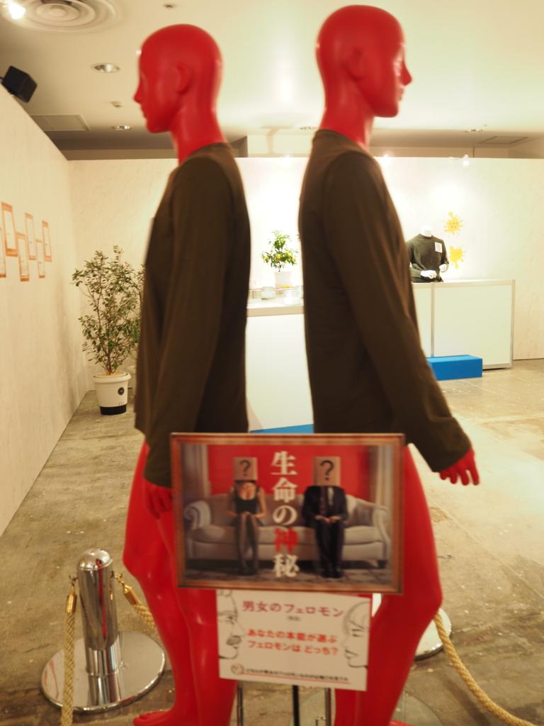 f:id:maido-doumo-naoyadesu:20161202152209j:plain