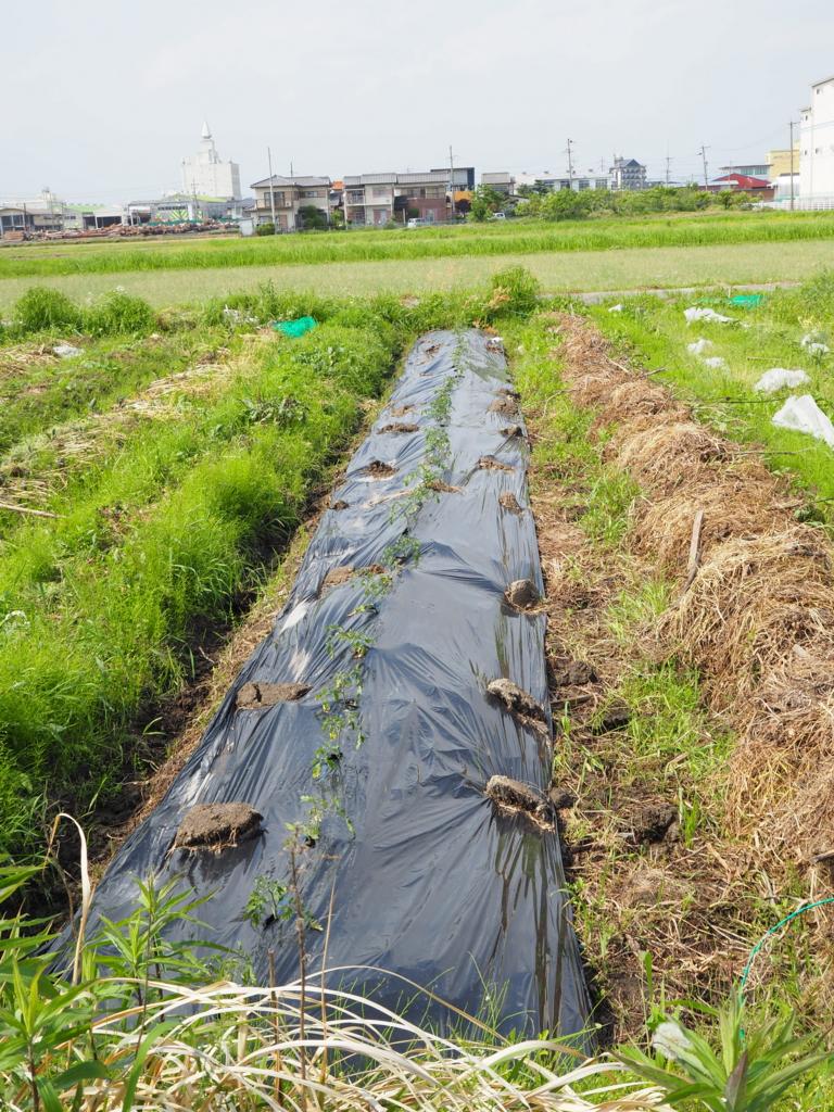 f:id:maido-doumo-naoyadesu:20170521150452j:plain
