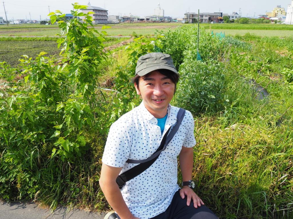 f:id:maido-doumo-naoyadesu:20170521150615j:plain