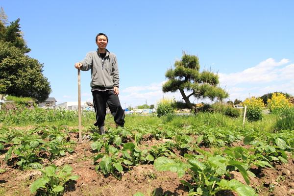 f:id:maido-doumo-naoyadesu:20170523181254j:plain