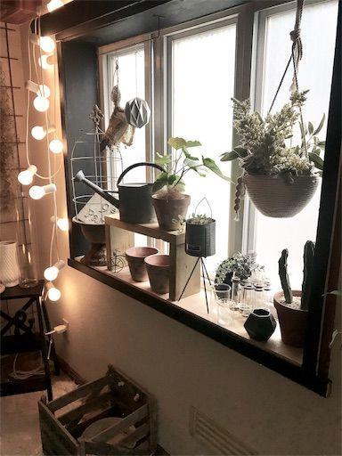 賃貸DIY 賃貸インテリア 観葉植物 インダストリアルインテリア