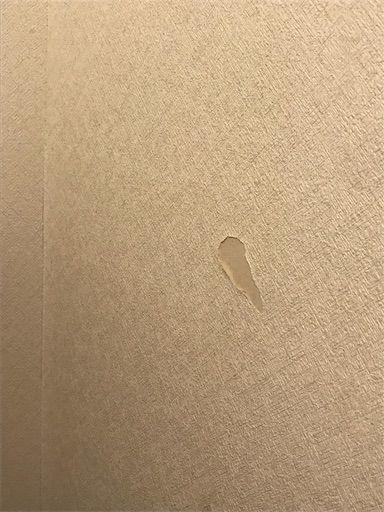 トイレ トイレDIY 賃貸トイレ 原状回復 トイレ壁紙