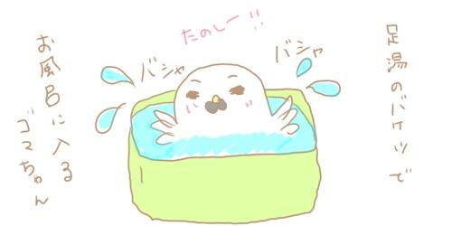 f:id:maiki5822:20190603151121j:plain