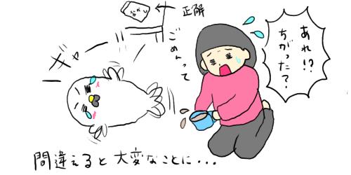 f:id:maiki5822:20191003142546p:plain