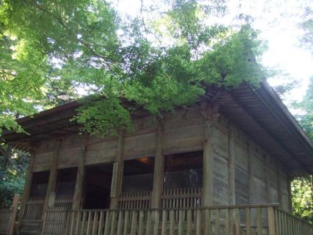 f:id:maiko-ssk:20120913031159j:image