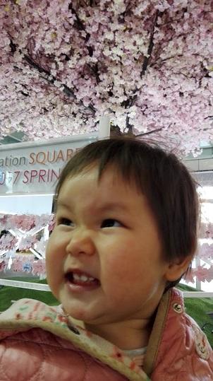 f:id:maikookima:20170412122807j:plain