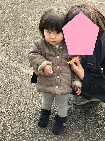 f:id:maikookima:20171231001135j:plain