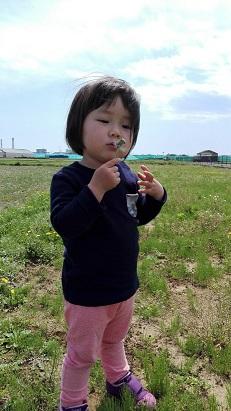 f:id:maikookima:20180418222912j:plain