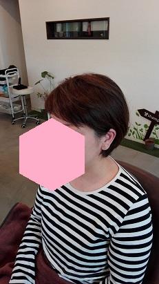 f:id:maikookima:20180418223126j:plain