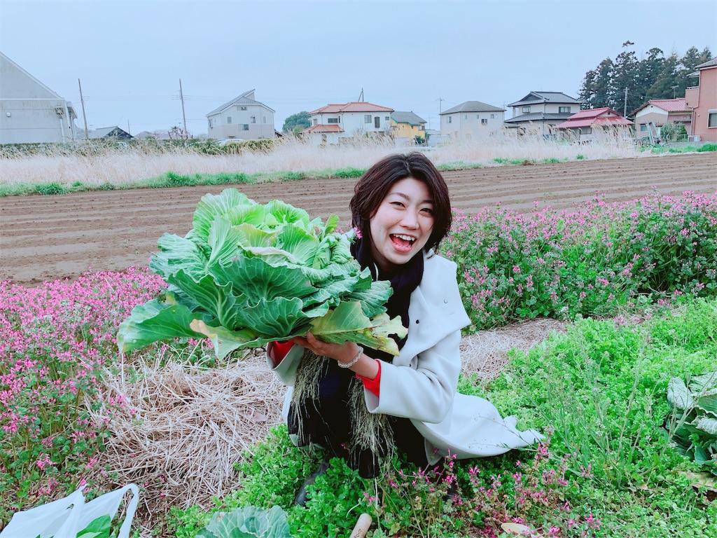 f:id:maikosakai_official:20190506003025j:image
