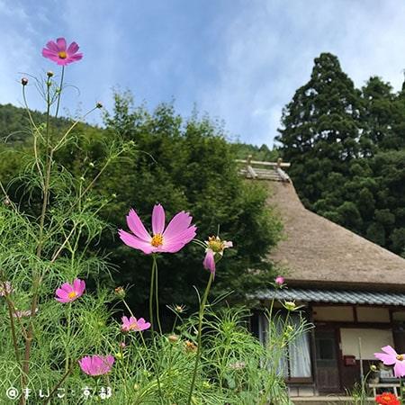 f:id:maikoto:20181008183843j:plain