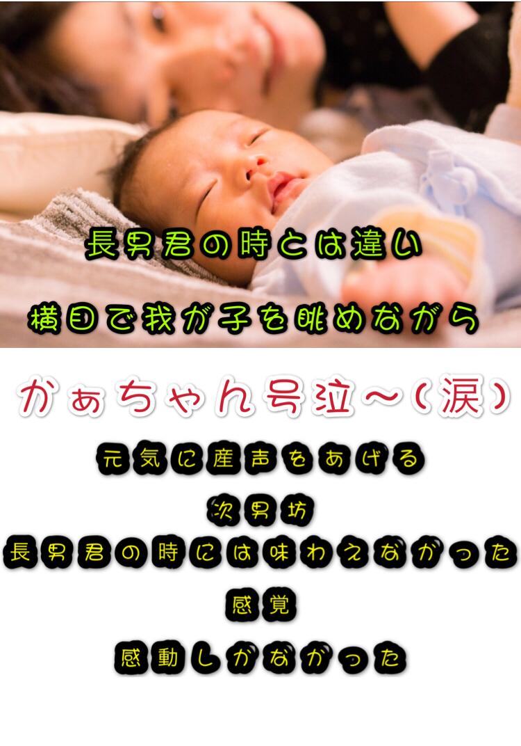 f:id:mainichi-kahchan:20190723040517j:plain