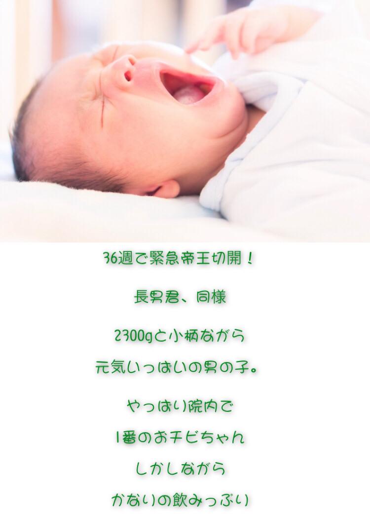 f:id:mainichi-kahchan:20190724085317j:plain