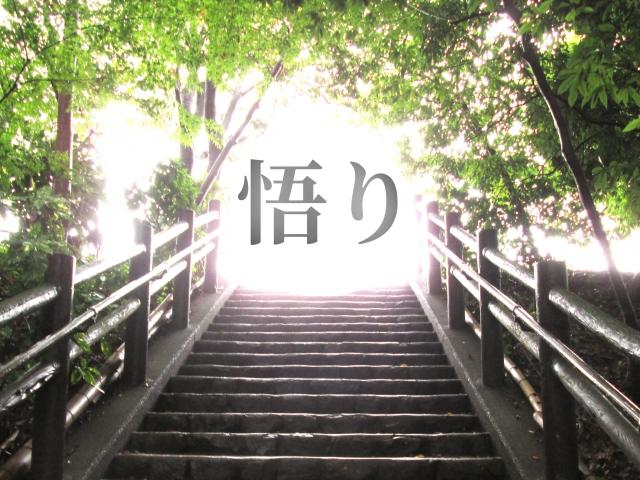 f:id:mainichi-kahchan:20190807140543j:plain