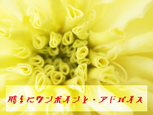 f:id:mainichi-kahchan:20200115101238j:plain