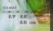 f:id:majideko:20191225153229p:plain