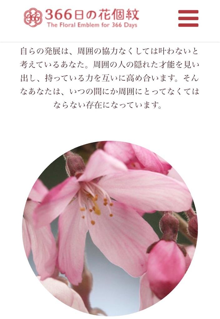 f:id:majoranaair:20180220122101j:image