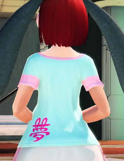 ニンドリTシャツ後ろ姿