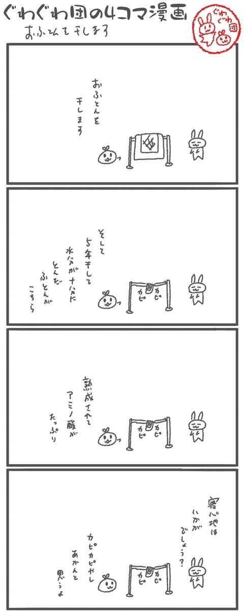 f:id:make_usagi:20201114113901j:plain