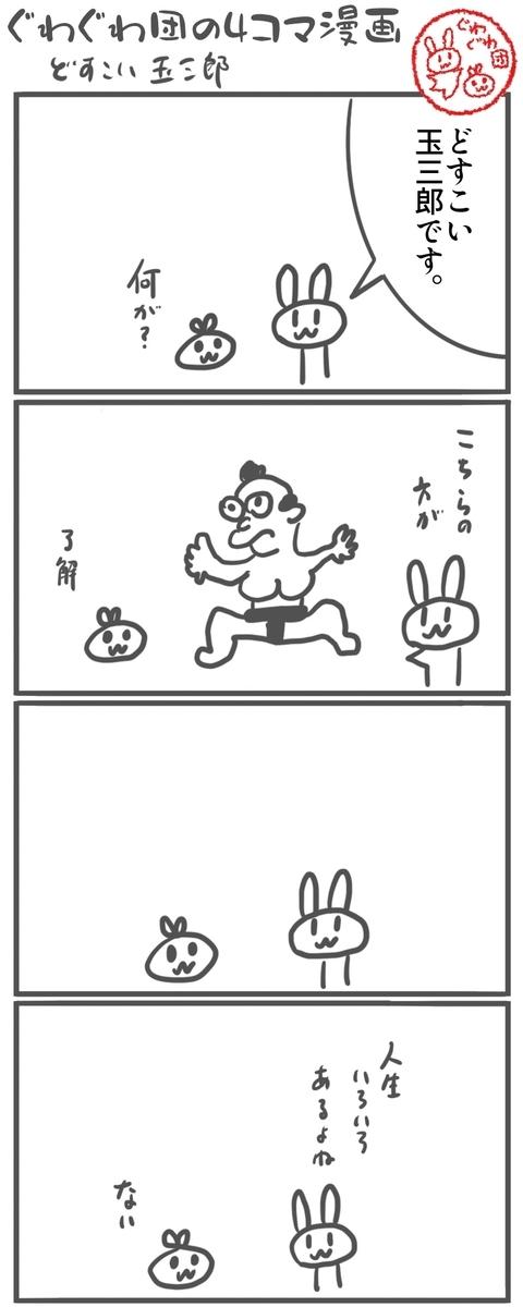f:id:make_usagi:20210408212304j:plain