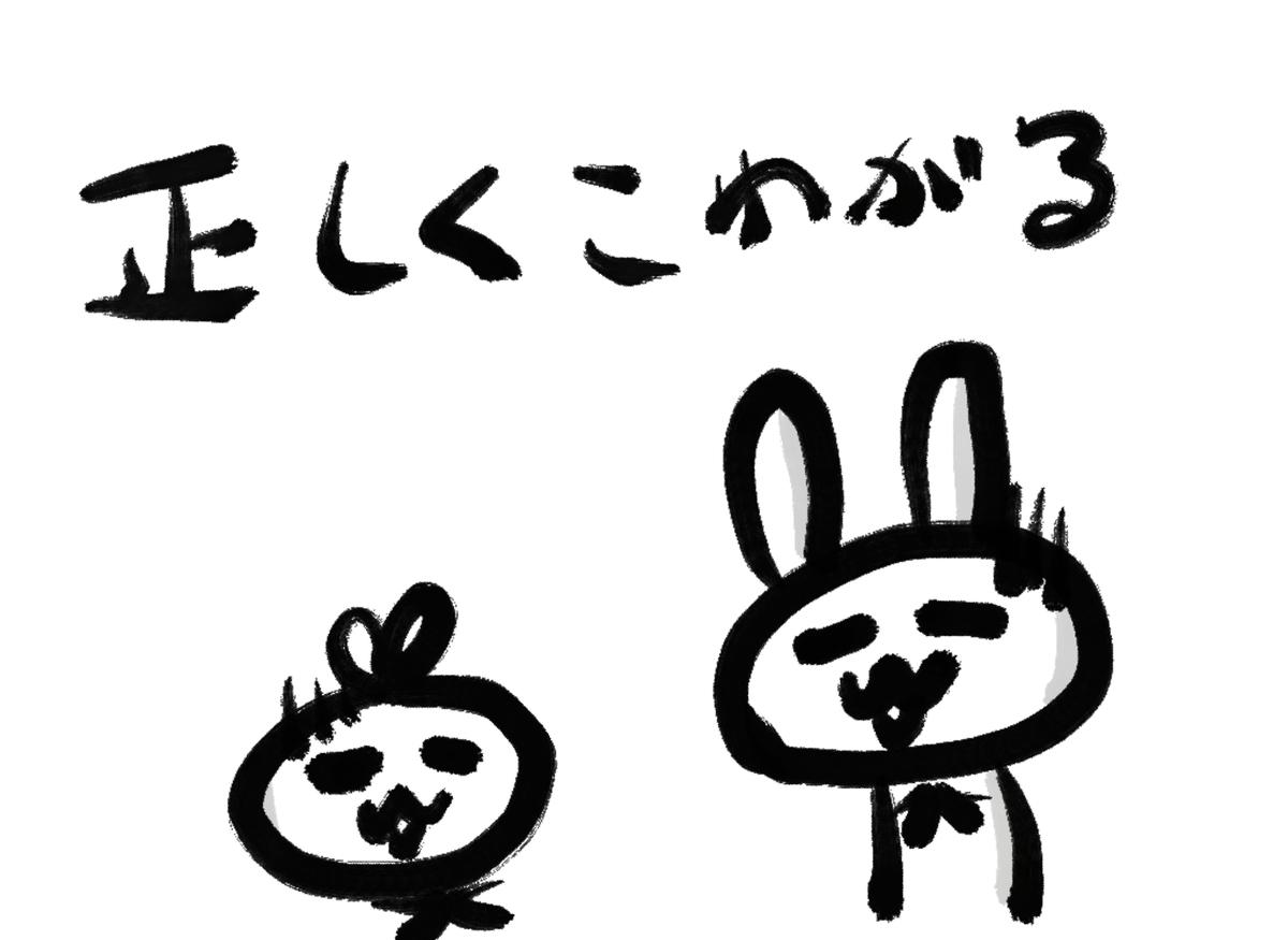 f:id:make_usagi:20210729201931j:plain
