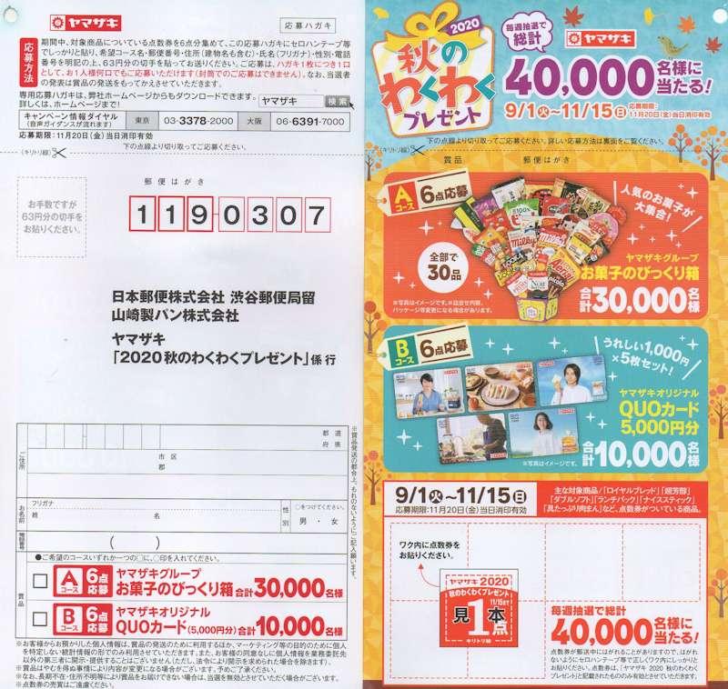 f:id:maki-hana:20201016230328j:plain