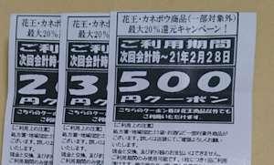 f:id:maki-hana:20201226112221j:plain