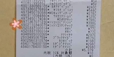 f:id:maki-hana:20210104211221j:plain