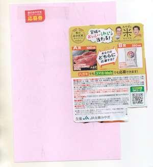 f:id:maki-hana:20210312234947j:plain