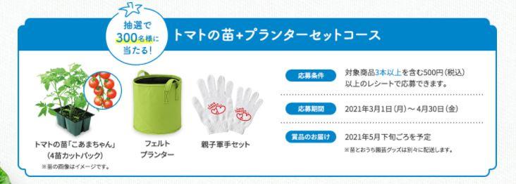 f:id:maki-hana:20210408184320j:plain