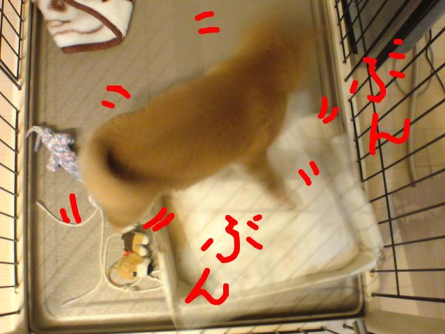 f:id:maki-mama:20081116081933j:image:w400