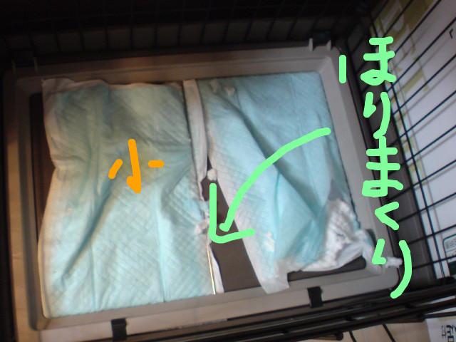 f:id:maki-mama:20081125104415j:image:w300