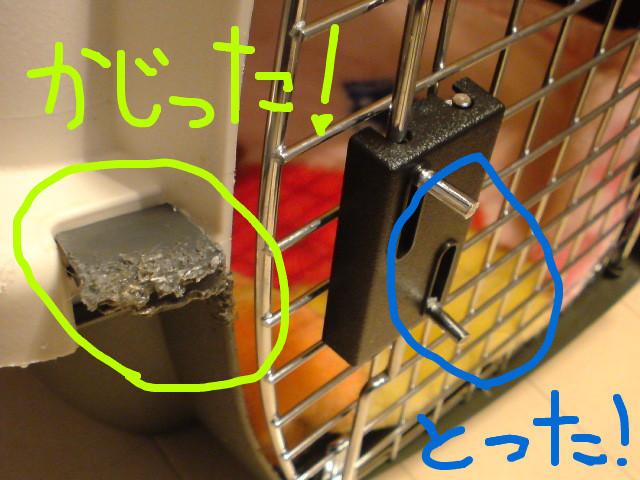 f:id:maki-mama:20081128090100j:image:w400
