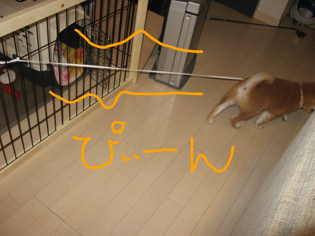 f:id:maki-mama:20081201094613j:image:w300