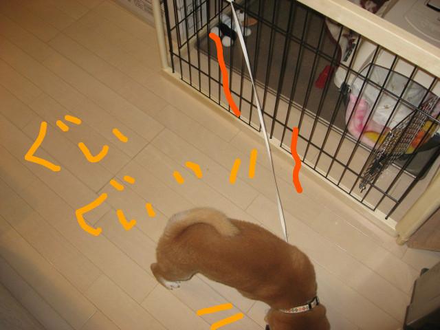 f:id:maki-mama:20081201094614j:image:w300