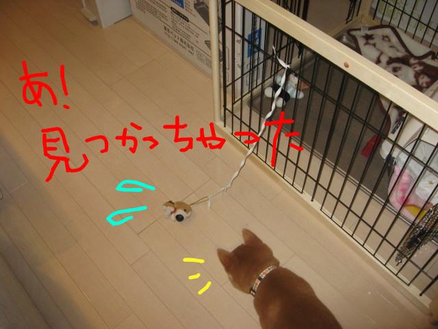 f:id:maki-mama:20081201094616j:image:w300