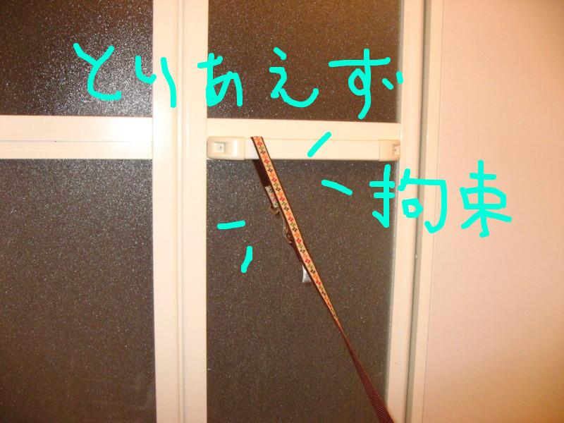 f:id:maki-mama:20081203081029j:image:w400