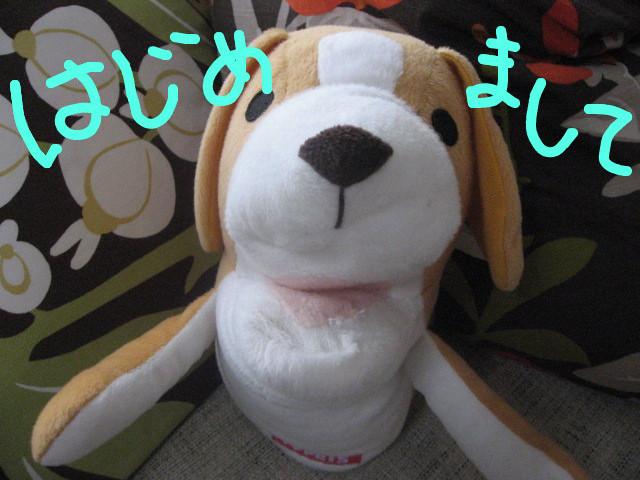 f:id:maki-mama:20081205140045j:image:w400