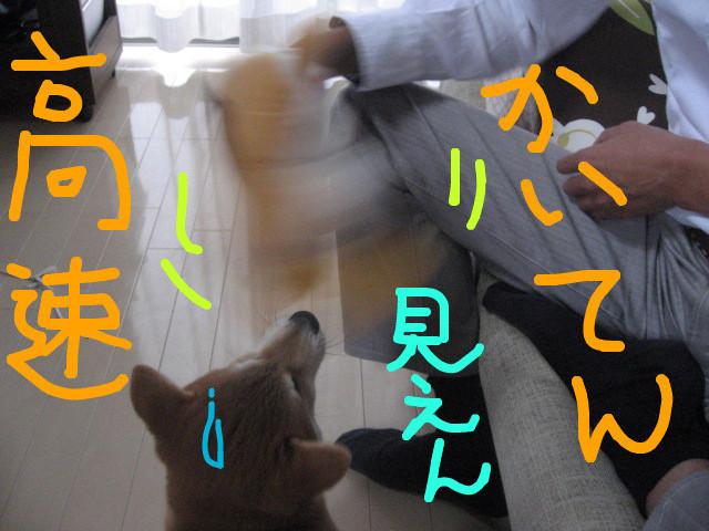 f:id:maki-mama:20081205140047j:image:w300