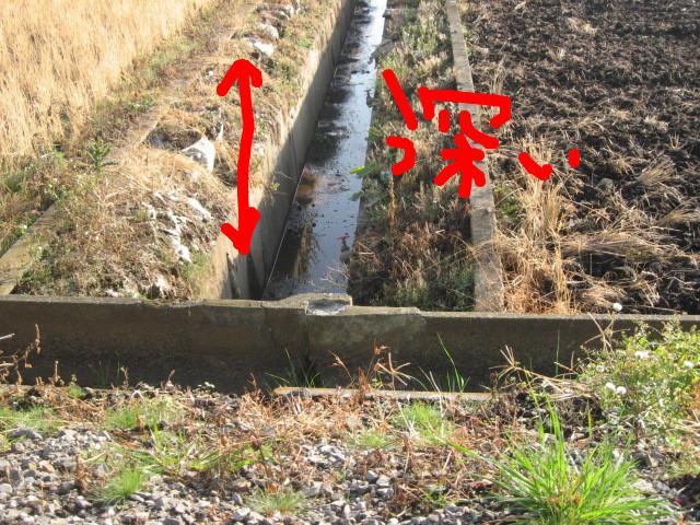 f:id:maki-mama:20081212145308j:image:w300