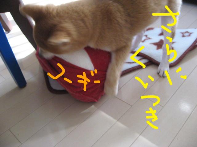 f:id:maki-mama:20081212145315j:image:w300
