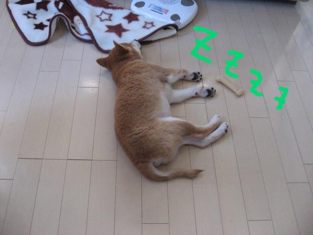 f:id:maki-mama:20081212145317j:image:w300