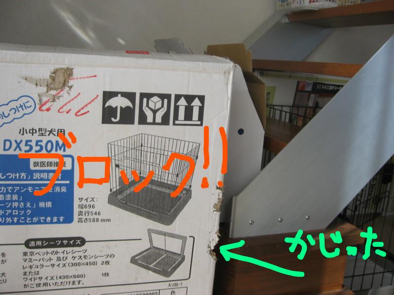 f:id:maki-mama:20081218143605j:image:w300