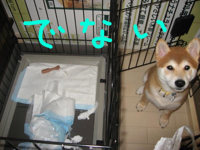 f:id:maki-mama:20081219124643j:image:w300