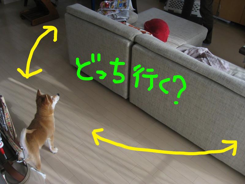 f:id:maki-mama:20081219124645j:image:w300