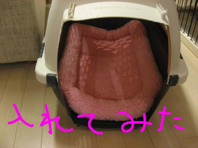 f:id:maki-mama:20081221200257j:image:w300