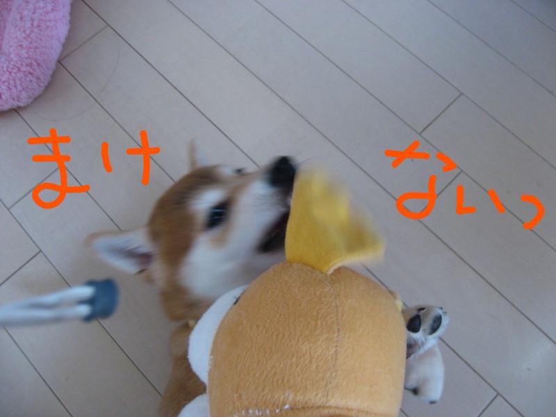 f:id:maki-mama:20081223085201j:image:w300
