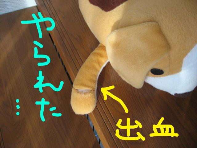 f:id:maki-mama:20081223085202j:image:w300